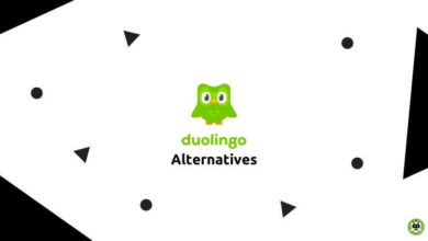 Photo of Top 10 Best Duolingo Alternatives For Android in 2021