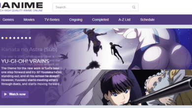 Photo of Top 10 Best Alternatives to 9Anime for Watching Anime Movies