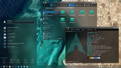Photo of Top 10 Best Linux Distros For Programmers and Developers