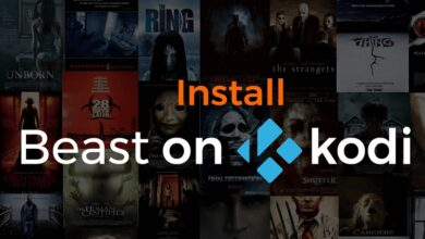Install The Beast on Kodi